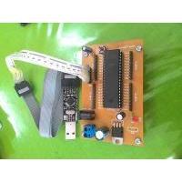 Sistem Minimum + IC Atmega16 + USB Downloader