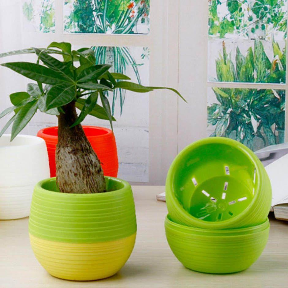 Mini Pot Bunga Hias Kaktus Tanaman - 5pcs